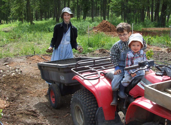 Mom and boys working in the blueberry field, the boys on the atv.